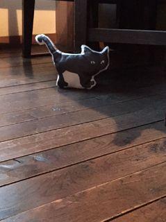 館内黒猫.jpg